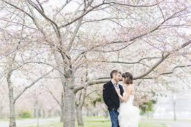 cherry blossom wedding simple washington dc courthouse wedding emilie zack united