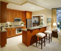 kitchen l shaped small kitchen design with woden cabinet small