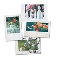 pumpernickel press wildlife cards clearance geeting cards pumpernickel press