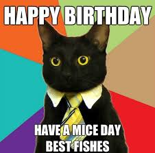 Birthday Meme Grumpy Cat - incredible happy birthday memes for you top collections