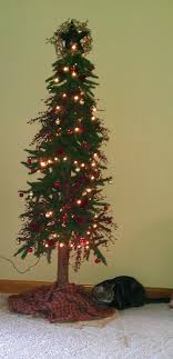 primitive tree decorated with pip berry garland