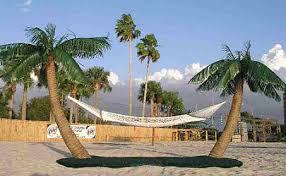 the original palm island hammock stand swings n things