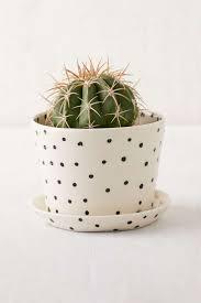 Cactus Planter by 202 Best Frida Flores Y Cactus Images On Pinterest Cactus