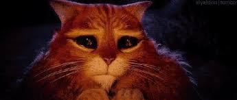 cat tastrophe u0027puss boots 2 u0027 moviepilot