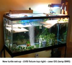 uvb light for turtles uv lighting for reptiles a new problem with high uvb output