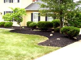 Cheap Landscaping Ideas For Backyard by 25 Best Ideas About Front Yard Landscaping On Pinterest Yard