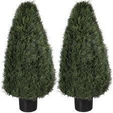 two 36 inch artificial cedar cypress wide cone outdoor topiary
