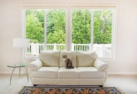 Design Your Home By Yourself How Long Can You Leave Your Cat Home Alone Cuteness