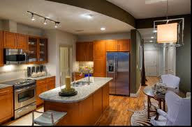 Houston Interior Designers by Top Apartments For Rent Downtown Houston Decorating Ideas Best To