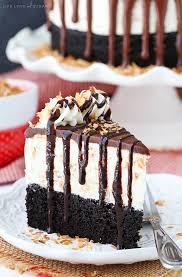 toasted coconut chocolate ice cream cake life love and sugar