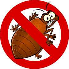 What Do Exterminators Use To Kill Bed Bugs Bed Bug Treatments Exclusive Pst Control Charleston