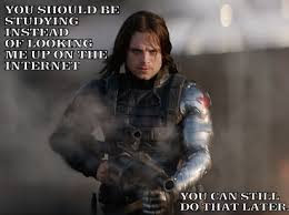 Winter Soldier Meme - winter soldier meme you should be studying by teaoradventure on