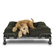 canap chien canapé pour chien dandy s pet