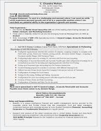 corporate resume format mnc companies resume format free fluently me
