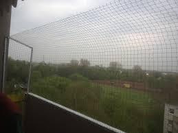 balkon katzensicher machen katzennetz nrw die adresse für ein katzennetz markise und