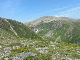 New Hampshire vegetaion images Summit to mt washington tallest peak in new hampshire jpg