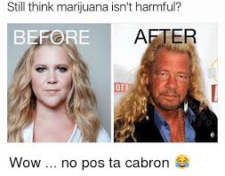 Pos Ta Cabron Meme - still think marijuana isn t harmful aeter before off wow no pos ta
