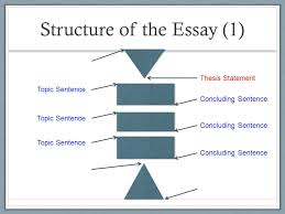 Thesis length phd uk stacy blackman stanford essays that got