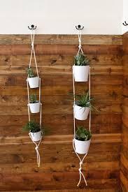 Diy Hanging Planters by 570 Best Plants Indoor Hanging U0026 Diy Pots Images On Pinterest