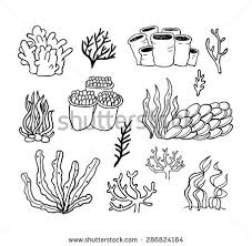 coral reef with fish vectors download free vector art stock