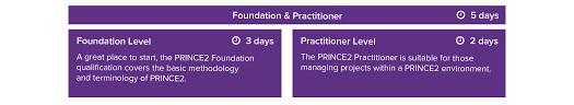 project management viewing the prince2 project as a system in