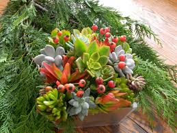 Christmas Centerpieces For Tables by Succulent Holiday Centerpiece Succulent Centerpiece Christmas
