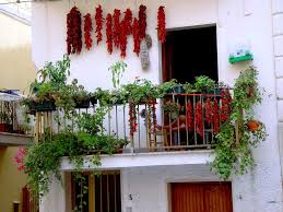 Patio Vegetables by Vegetable Garden Balcony Decorating Ideas Showing Red Chilli And