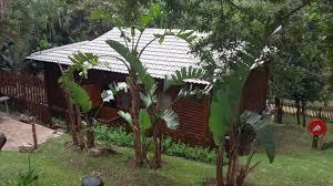 big tree cabins and camping in ramsgate u2014 best price guaranteed