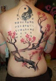 collection of 25 cherry blossom tree on back for
