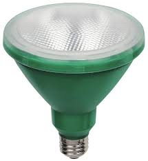 Led Outdoor Flood Lights Westinghouse Par38 15 Watt Replaces 100 Watt Medium Base Green