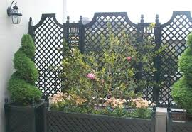 Potted Plant Ideas For Patio by Garden Landscape Privacy Plants Ideas Scarlet Firethorn Patio