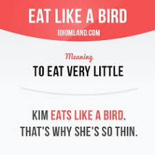 As Blind As A Bat Meaning Related Image Tuition Pinterest English Language And