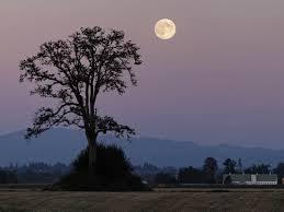 shine on harvest moon strange facts about tonight u0027s full moon