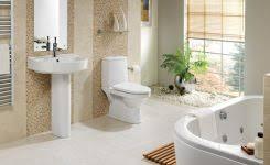 handicap accessible bathroom design for good handicapped