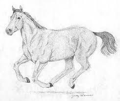 horse art gotta love horses
