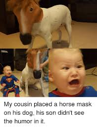 Horse Mask Meme - my cousin placed a horse mask on his dog his son didn t see the