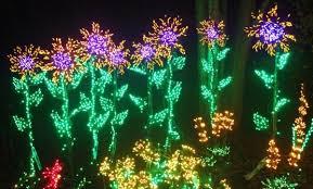 Bellevue Botanical Garden Lights 2016 Garden D U0027lights Free Nights Bellevue Botanical Garden Info