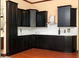 Black Shaker Kitchen Cabinets Shaker Style Cabinet Black Livingurbanscape Org