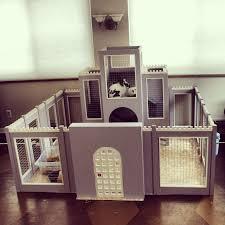 Cool Pets Rabbit Hutch Best 25 Rabbit Cage Diy Ideas On Pinterest