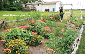 garden plans ontario 28 images 20 simple gardening tips for