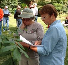 master naturalists offer extensive knowledge of the outdoor world