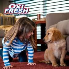 Professional Rug Cleaning Austin Oxi Fresh Carpet Cleaning 27 Photos U0026 12 Reviews Austin Tx