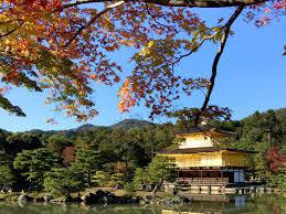 November Tokyo by Autumn Holiday In Japan 2015 Tokyo Kyoto Osaka Mount Fuji