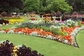 homely ideas how to design a garden bed raised bed garden plans
