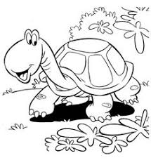 two turtle coloring page crafty things pinterest turtle
