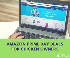 amazon black friday bird cages amazon prime day deals for chicken owners efowl