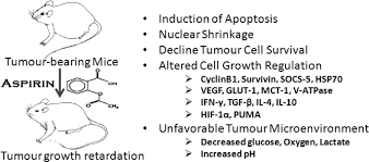 anti neoplastic action of aspirin against a t cell lymphoma