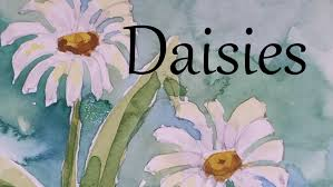 how to paint daisies flowers in watercolour watercolor draw