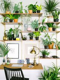 15 gorgeous ways to decorate with plants study rooms plants and
