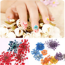compare prices on nail wholesalers online shopping buy low price